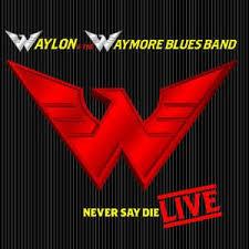 Waylon Jennings - Never Say Die Live
