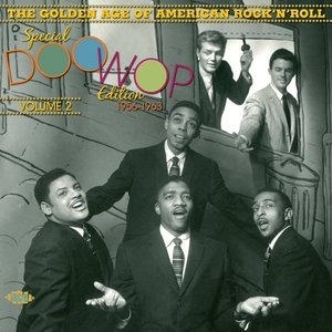 Various - Golden Age Of American Rock n  Roll : Special Doo Wop Vol. 2