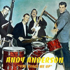Andy Anderson - You Shake Me Up