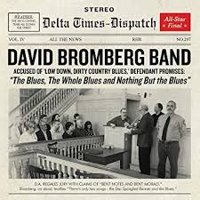 David Bromberg Band - The Blues The Whole Blues And Nothing But The Blues