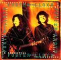 Foster-&-Lloyd-The-Essential