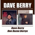 Dave-Berry-Dave-Berry-One-Dozen-Berrys