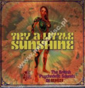 Various-Try-A-Little-Sunshine:-British-Psychedelic-Sounds-Of-1969-(3-cd)